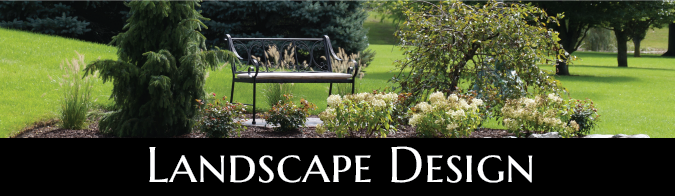 Garden landscape design with a bench